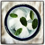 Mint goes so well in so many drinks, try it in a Shrub Cocktail or two IMG_3378