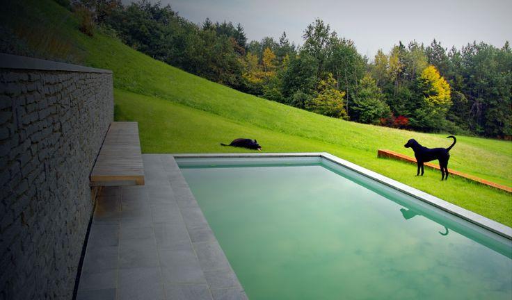 WARM RED. ALMOST FIERY. // rural garden design: Landscape d.o.o. / fb landscape slovenia / www.landscape.si /