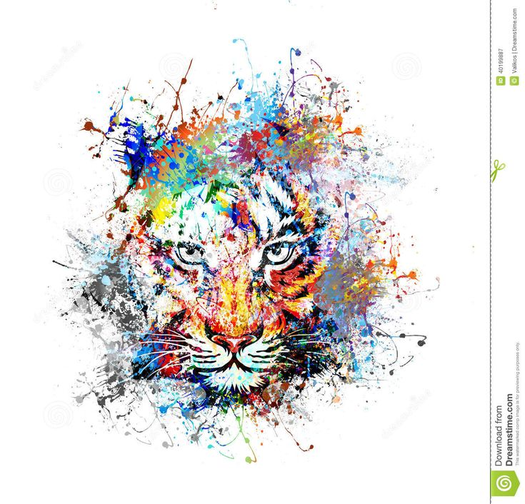 Best 25 Tiger Painting Ideas On Pinterest