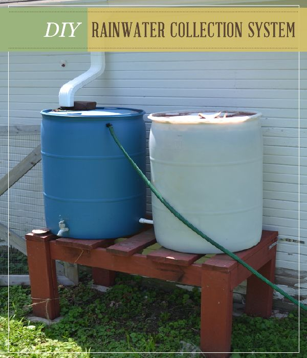 Diy rainwater collection system for homesteaders for Home rainwater collection