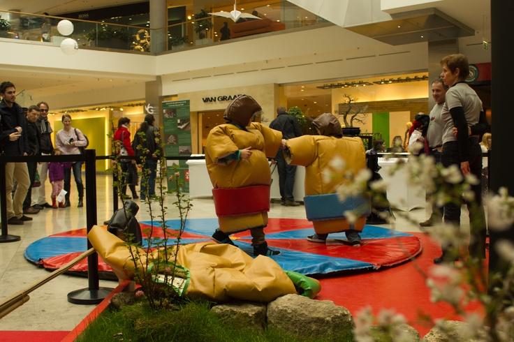 #sumo #japan #allee
