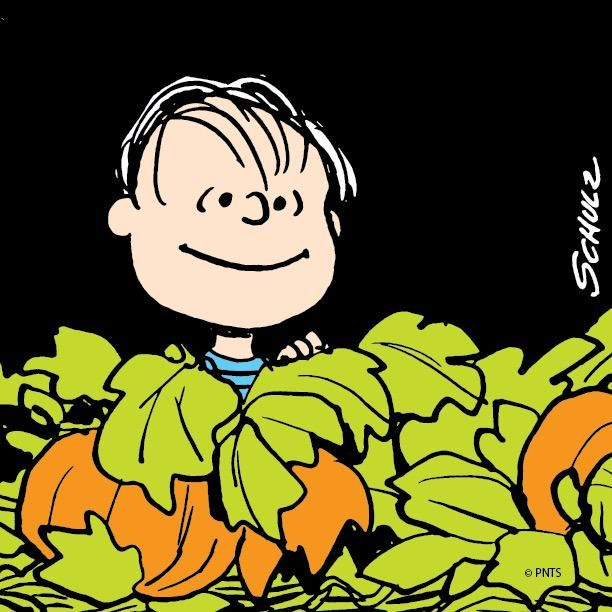 linus waiting for the great pumpkin find this pin and more on peanuts halloween - Charlie Brown Halloween Cartoon