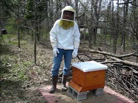Backyard Beekeeping Part 1: Hiving the Bees.. I like this series of videos to learn about beekeeping.