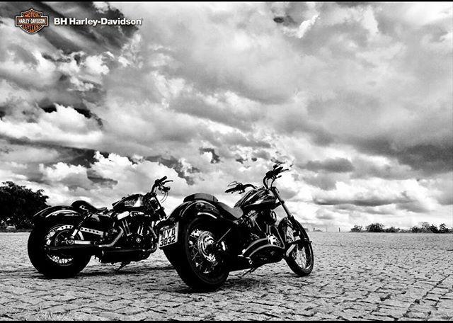 Boa semana a todos. Trabalhe duro. O final de semana compensa. ✊✊✊ @jpsofranz #HarleyDavidsonBR #bhharleydavidson #harleydavidson #softailblackline #fortyeight