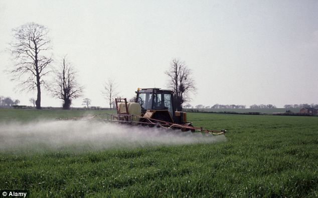 A tractor sprays barley crops: Pesticides are among the toxic chemicals which may be triggering neurological disabilities among children, in...