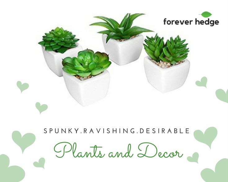 Shape your space with our gorgeous and high-quality artificial #plants. Some people don't have time to water the plants, #ArtificialGreenery is the perfect option to #decor your #home. . . . #MotivationalMonday #shoplocal #interiors #trees #plantdecor #flowers #luxury #designers #artists #artificialtree #foreverhedge