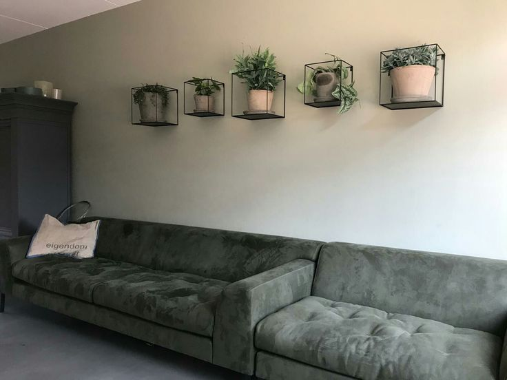 Plants above the couch, industrial design – #above…