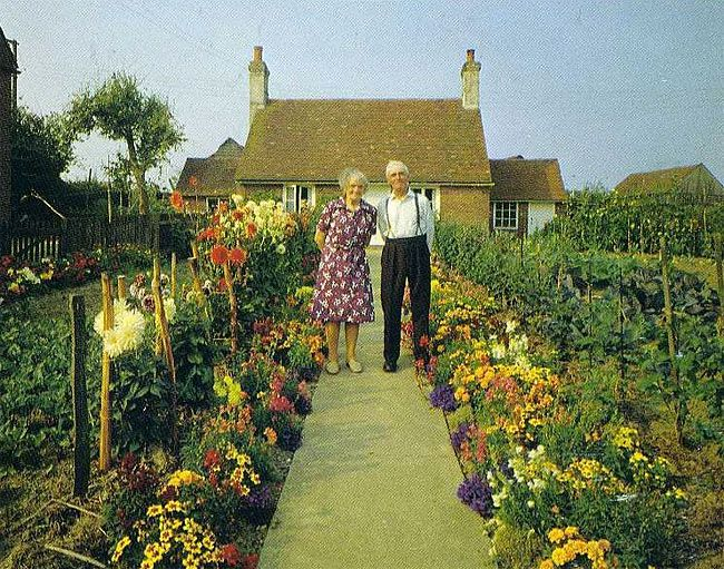 Elderly Couple Took the Same Photo Every Season but the Last One will Break Your Heart