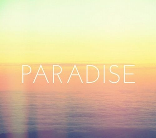 para-para paradise :3