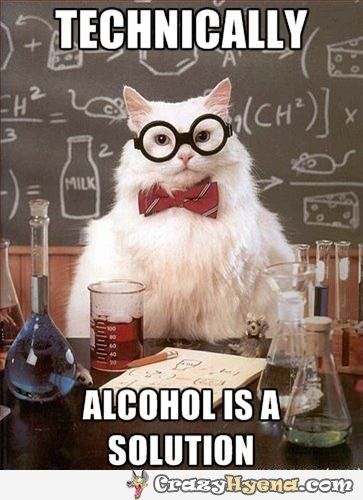 Technically alcohol is a solution. Chemistry cat funniest photo.