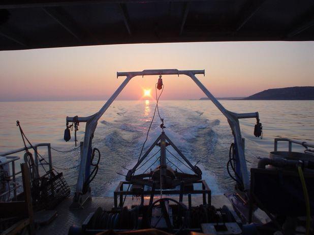 Research vessel RV Noctiluca