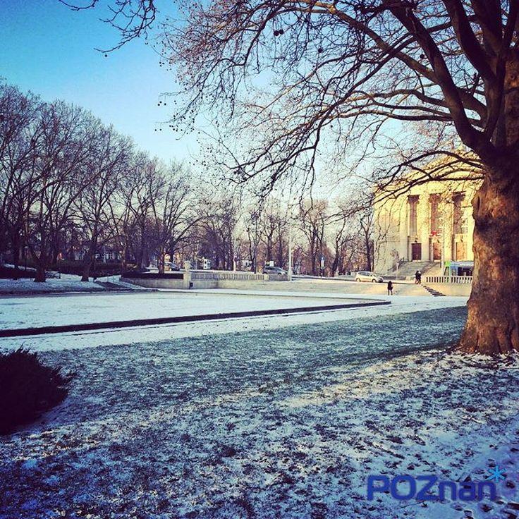 W parku Adama Mickiewicza