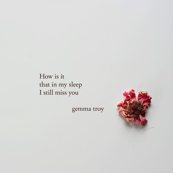 """Image © 2018 Gemma Troy """"How is it that in my sleep I still miss you it is though my body craves for you more than my heart and that my mind wants you more than my hands and even though the dreams feel real nothing comes close to having you near."""" #text #textposts #poem #words #textgram #saying #thoughts #quotes #originalquote #written #philosophy #poetry #feelings #gemmatroy #thinking #mind #minds #meaning #meaningful #wise #advice #choices #learn #value #poems #poetry #change #reality…"""