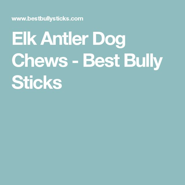 25 best ideas about bully sticks on pinterest bully sticks for dogs dog dental chews and dog. Black Bedroom Furniture Sets. Home Design Ideas