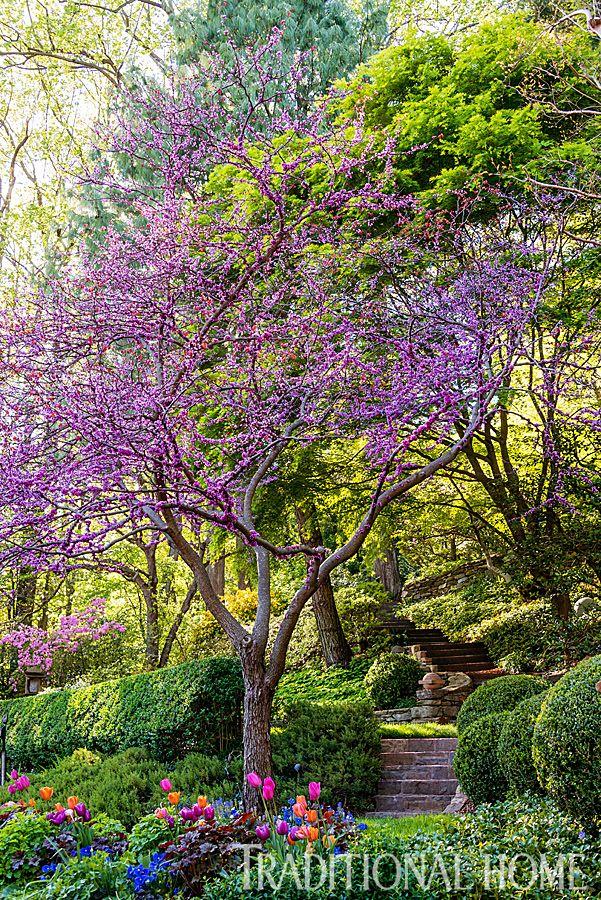 Colorful Terraced Garden in Pennsylvania | Traditional Home