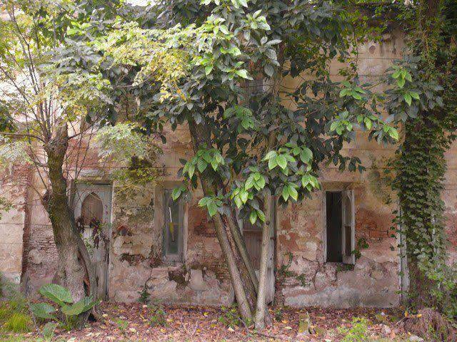 "R- Edificación dentro del ""Castillo de Naveira"",Luján,Buenos Aires,ARGENTINA-"