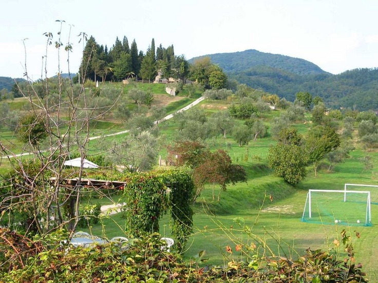 a small football field surrounded by old olive trees and beautiful hills