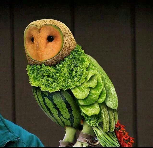 Food art!!! Bebe'!!! Love this owl predominately of watermelon!!!