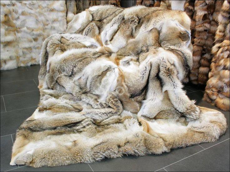 Coyote Fur Blanket by Lars Paustian