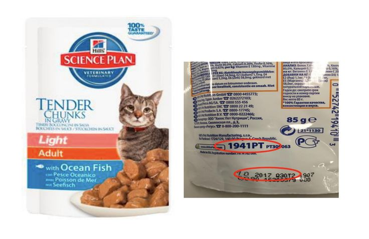 No, There's No New U.S. Recall of Hill's Pet Foods