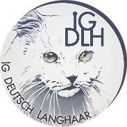 Sinthari ~ Deutsch Langhaar Zucht