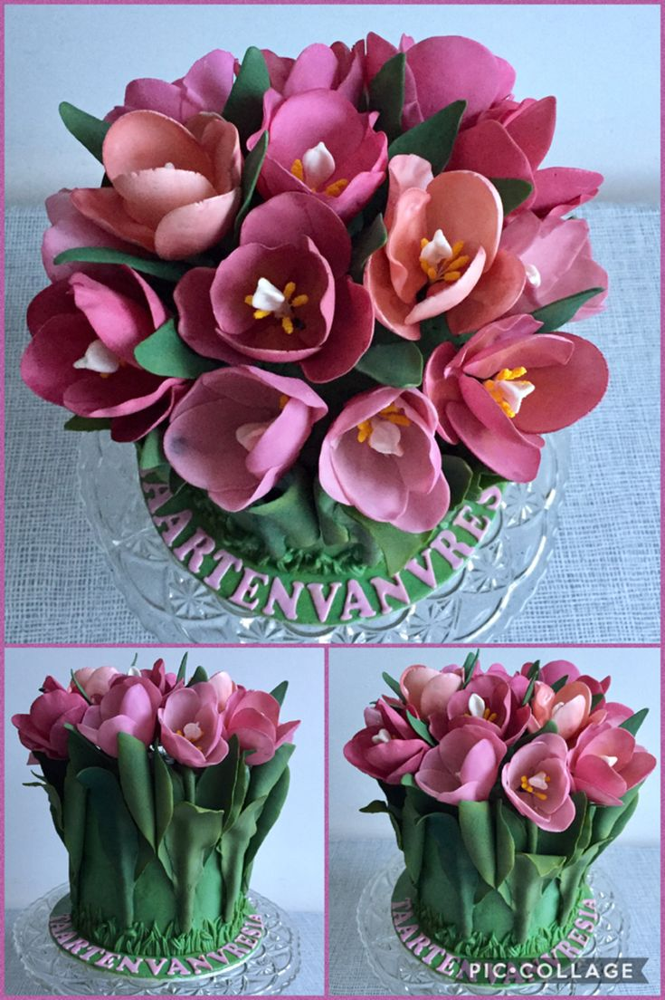 Tulips From Holland on Cake Central