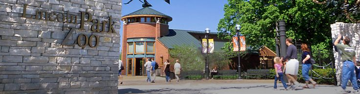 Chicago's free zoo, Lincoln Park Zoo is open 365 days a year.