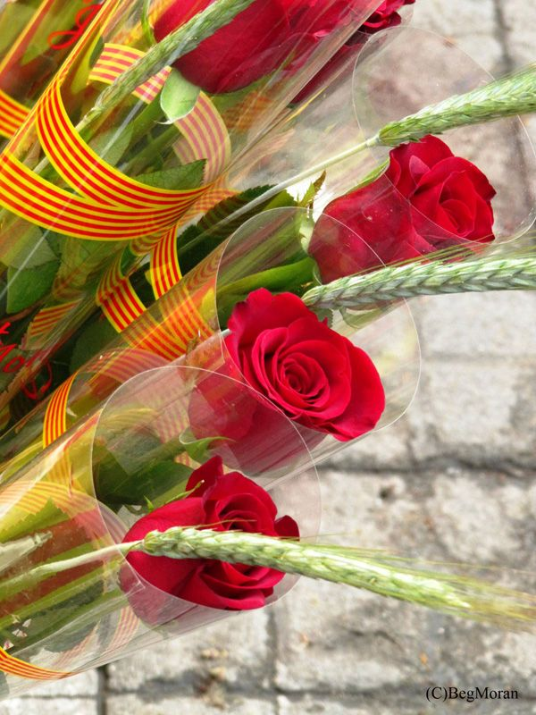 """Historically, men gave women roses, and women gave men a book to celebrate the occasion—""""a rose for love and a book forever."""" In modern times, the mutual exchange of books is also customary. Roses have been associated with this day since medieval times, but the giving of books is a more recent tradition originating in 1923, when a bookseller started to promote the holiday as a way to commemorate the death of William Shakespeare on 23 April 1616."""