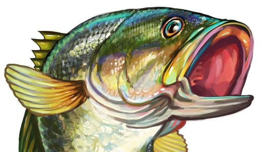 216 best images about clip art etc fish sea on for Bass fishing art
