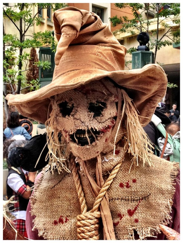 Halloween: The Scarecrow... but this one looks like hes wearing the sorting hat:p