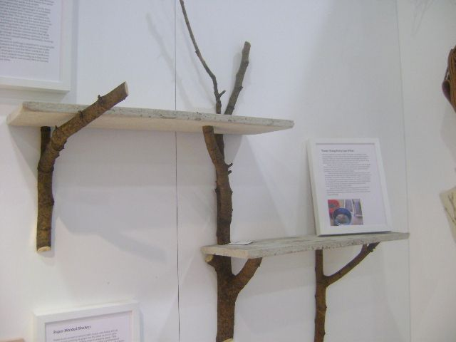 Tree Branch Book Shelves - Decor Hacks | Decor Hacks-have lots of branches now that the tree fell in the front yard....LOL