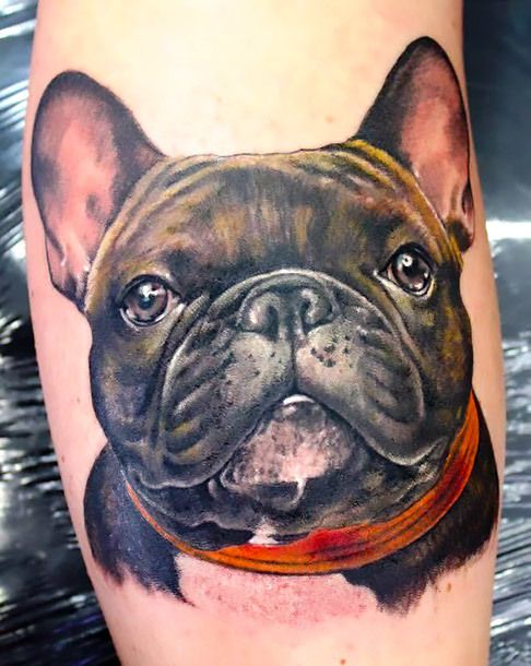 A realistic tattoo idea of a french bulldog inked on the forearm. Style: Realistic. Tags: Nice, Beautiful