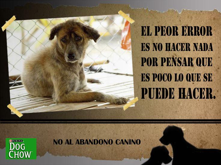 Campaña de responsabilidad social NO AL ABANDONO CANINO-DOG CHOW