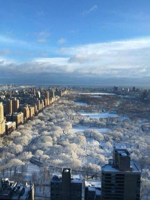 NYC. Snowfall in Central Park, looking North