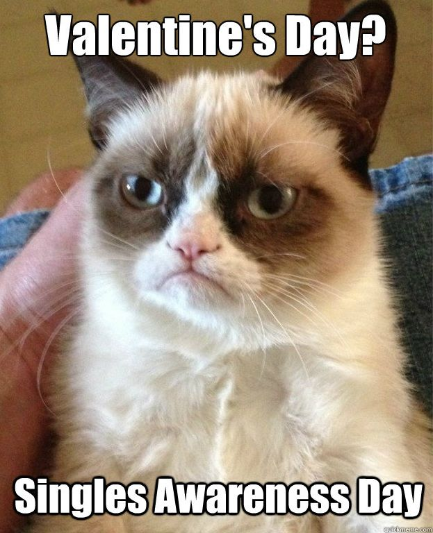 Grumpy Cat Valentine's Day @Chelsea Dempsey