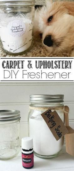 DIY Carpet and Upholstery Freshener . The perfect green cleaning method to get rid of pet odors, food odors and more!