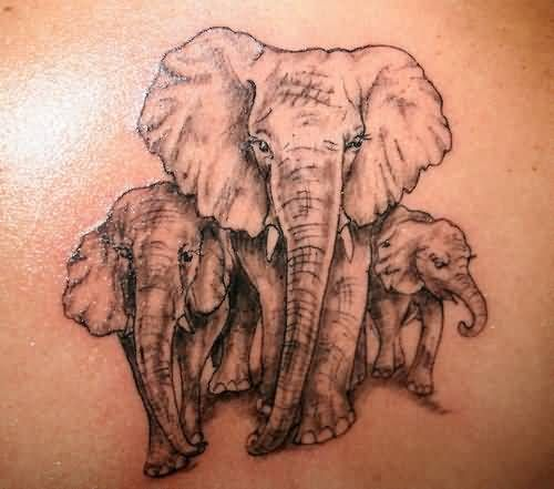 Amazing Sweet Elephant Family Tattoo Image