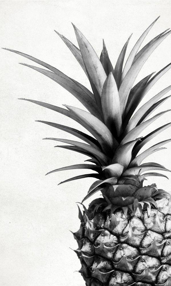 tumblr bilder schwarz weiß sprüche