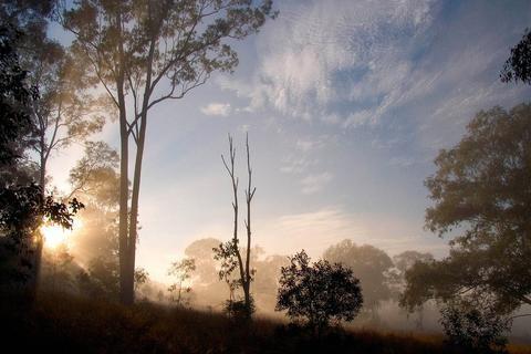 Kaori Australia Australian Bush Scented Candle