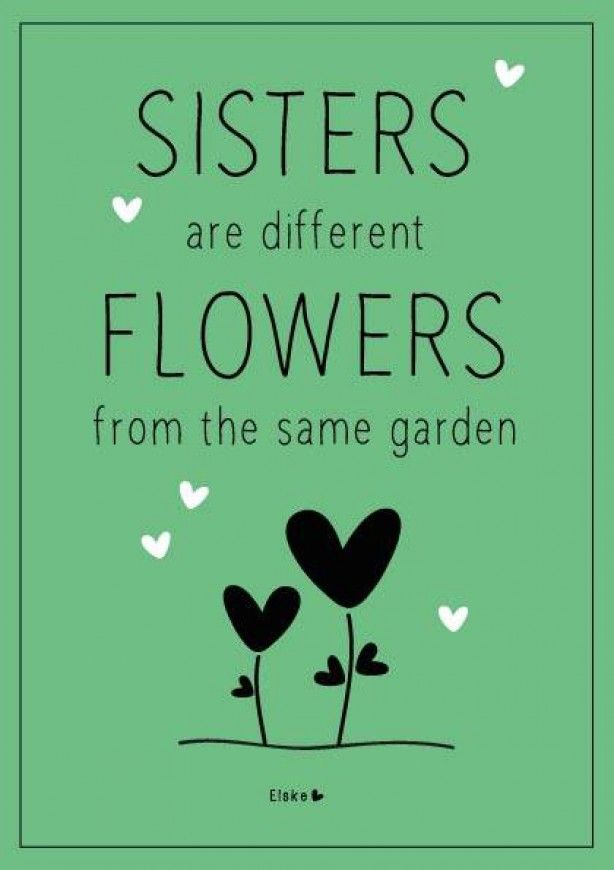 idee voor verjaardagscadeau zus. je maakt nog een creppapier bloem en steekt hem erbij een prachtig cadeau toch???