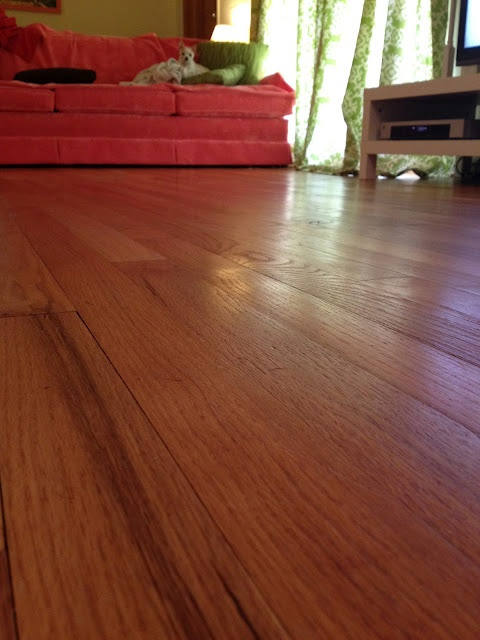 DIY Keeping Wood Floors Clean- This is so simple I feel absolutely stupid that I've been on my hands and knees with a bucket for 6 months.