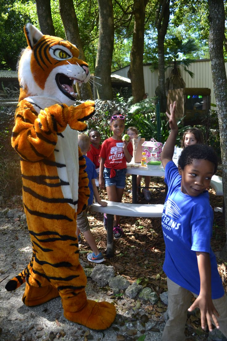 Chuffer visiting kids on a School Field Trip to Dade City's Wild Things
