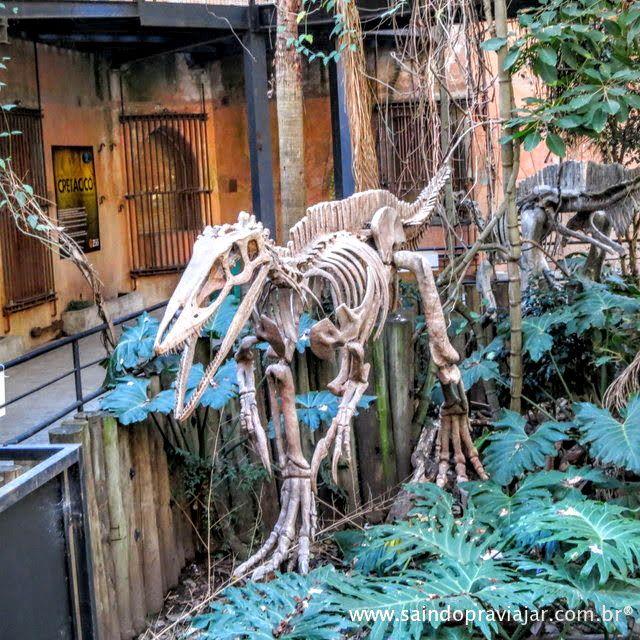 Zoo / Buenos Aires / Argentina - Maio 2015