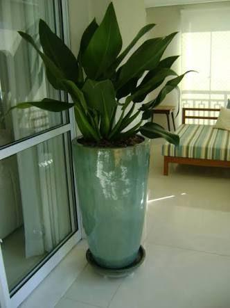 Resultado de imagem para vaso grande na entrada de casa