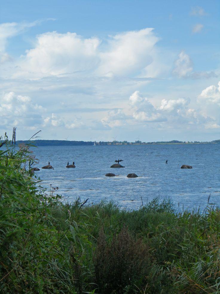 Fejø island
