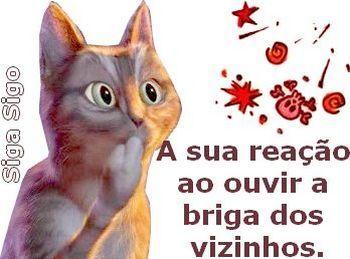 A sua reação ao ouvir a briga dos vizinhos. http://sigasigo.blogspot.com.br/2014/08/7-frases-com-imagens-para-redes-sociais.html