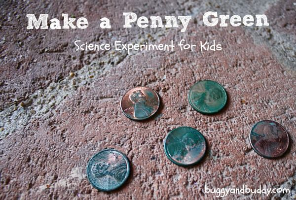 Science for Kids: Make a Penny Turn Green (with free printable) by Buggy and Buddy. With materials you have on hand, kids will be amazed at this chemical reaction.