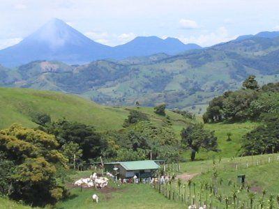 Insider's Guide to Costa Rica: Liberia
