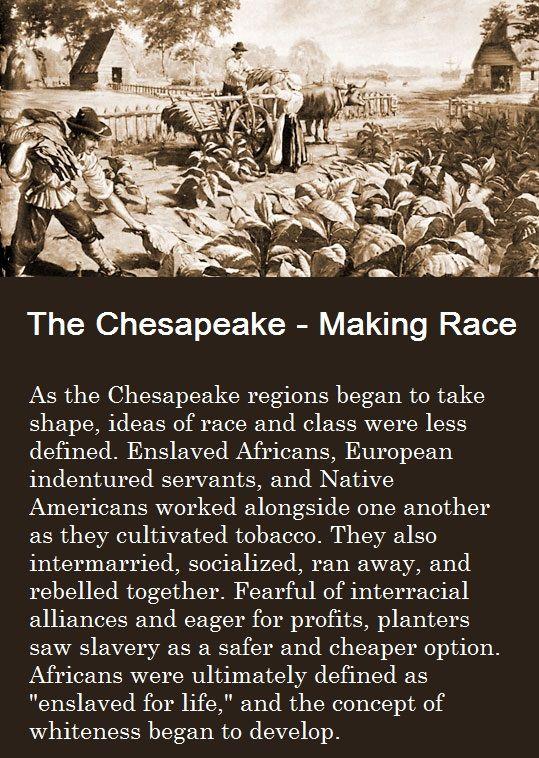 403 best Race & Ethnicity images on Pinterest | Sociology ...