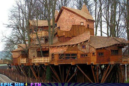 Best Tree House Ever Image